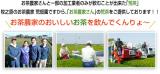 静岡県産のこだわりの上級深むし茶3煎の画像(9枚目)
