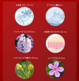 日本人の肌と生活にあわせたコスメ 紬 プラセンタ 美容液♪の画像(3枚目)