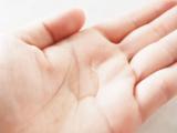 「毛先まで艶やかしっとり!大島椿をレビュー」の画像(2枚目)