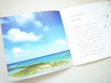 shellwomb αPINI28 コーラルクリア パウダーウォッシュ ♡【2】の画像(5枚目)