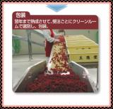 「お試し♪ 海の精 国産紅玉梅干」の画像(5枚目)