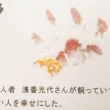 開運祈願*あさくさ福猫太郎 開運豆お守り【お守り】 の画像(2枚目)