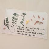 開運祈願*あさくさ福猫太郎 開運豆お守り【お守り】 の画像(1枚目)