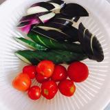 「収穫した夏野菜でおいしい浅漬け◟̑◞̑」の画像(9枚目)