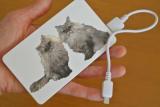 オリジナル写真プリントモバイルバッテリー4,000mAhの画像(6枚目)