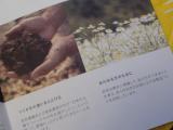 娘のあせもに・・ 甘い香りで ほっこいり入浴(^^)/の画像(4枚目)