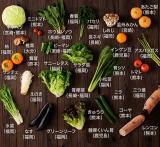 「♡ ドクターベジフル 九州やさいの純生酵素 ♡」の画像(4枚目)