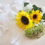 ✴︎endless SUMMER week🌻.今週のお花が @bloomeelife さまからポストに届いていました📮💐✨今回のお花のテーマは#エンドレスサマー なんだって☺️…のInstagram画像