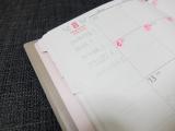 ★PAGEM(ペイジェム)ファミリー手帳★の画像(6枚目)