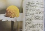 「肌荒れに悩んだら、華密恋薬用入浴剤でカモミール浴♡」の画像(3枚目)