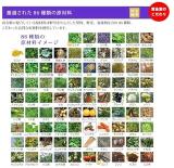 野菜酵素こがねむらさきの画像(8枚目)