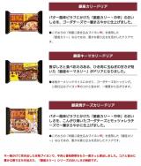 「★銀座カリーの冷凍ドリア『銀座カリー シリーズ』の感想」の画像(9枚目)