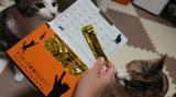 「【モニター】猫専用ウェットサプリ、ネコジーン」の画像(2枚目)