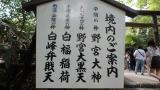 葉酸サプリ★ビーンスタークマムの画像(6枚目)