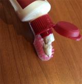天然由来歯磨き粉RED SEALで歯を磨いてます。 - ゆずのバカヤロー、16年の画像(5枚目)