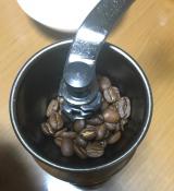 シベットコーヒーの画像(6枚目)