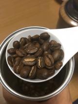 シベットコーヒーの画像(5枚目)