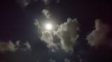 沖縄の十五夜☆の画像(1枚目)