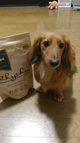 愛犬の理想的な体型をサポートする食事Rhythm(リズム)ヘルシーウェイトの画像(4枚目)