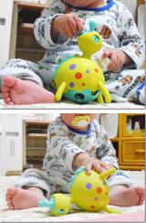 「輸入知育玩具」の画像(2枚目)