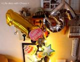 チョコ15歳のお誕生日♪の画像(13枚目)