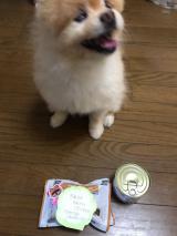 誕生日プレゼント頂きました♫꒰・‿・๑꒱の画像(2枚目)