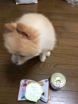 誕生日プレゼント頂きました♫꒰・‿・๑꒱の画像(1枚目)