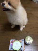 誕生日プレゼント頂きました♫꒰・‿・๑꒱の画像(3枚目)