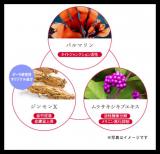 敏感肌のための美白ケア化粧品☆サエルトライアルセット*の画像(4枚目)
