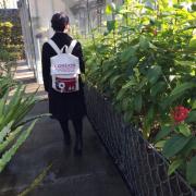 「冬の植物たち」【大好評企画!当選10名様】シルク腹巻・フォトコンテスト開催★テーマは「冬」の投稿画像