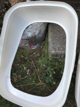 優のトイレ掃除 とれるNO.1の画像(4枚目)