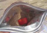 毎日の温活習慣に★リラク泉 毎日ゲルマバスの画像(4枚目)