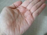 抗ストレス×抗酸化 サエルの画像(7枚目)