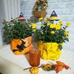 ハロウィンのシーズンに咲くガーデンマム「ハロウィンマム」 ..毎日帰宅後、元気に咲いてるかチェック!もう気になってしょうがない😄イエローがようやく半分咲きかな?ハロウィンには間に合わなかっ…のInstagram画像