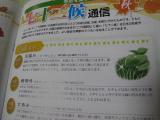 「海の精ショップ 伝統食育暦 NO.2」の画像(5枚目)