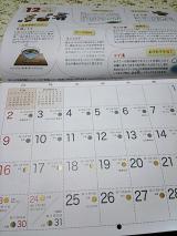 「来年のカレンダー」の画像(3枚目)