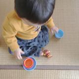 「お気に入りのおもちゃ。」の画像(1枚目)