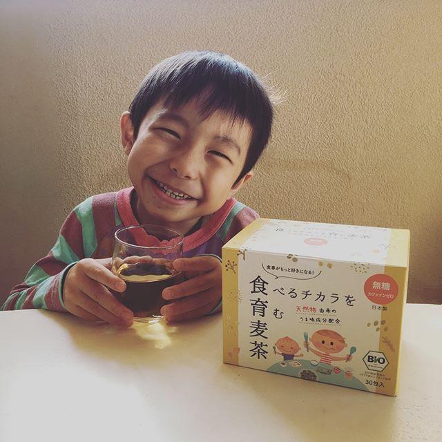 口コミ投稿:幼稚園児の次男は毎日水筒に麦茶を淹れて持って行っているのですが、【食育麦茶】と…