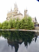 「【USJレポ】ブログ開設2周年&母の遠足USJクリスマスは最高♪」の画像(19枚目)