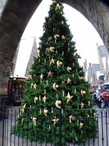 「【USJレポ】ブログ開設2周年&母の遠足USJクリスマスは最高♪」の画像(20枚目)