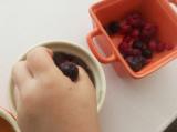 クールアガーを使って紅茶のミックスベリーゼリーとマンゴーゼリーをの画像(5枚目)