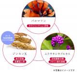 敏感肌用美白☆ディセンシア・サエルの画像(4枚目)