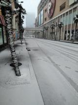 遂に初雪でござりますぅ~の画像(1枚目)