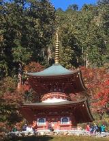 勝運の寺~勝尾寺の画像(9枚目)