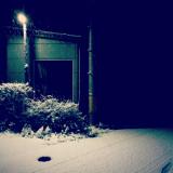 田舎の初雪