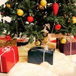 #クリスマス #christmastree #クリスマスツリー #christmas #크리스마스 #크리스마스트리 #рождество #рождество2018 #xmas #weihnach…のInstagram画像