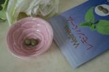 「レモンバーム | white rose♪のブログ - 楽天ブログ」の画像(4枚目)