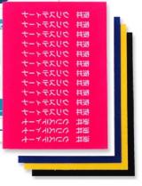 スキルマン・ディアカーズ お名前シール完璧コンビセット-名前のみ(ノンアイロン耐水シール&フロッキー)の画像(14枚目)