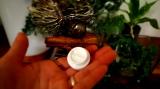 【モ】ヒト乳酸菌配合の保湿美肌クリーム モイスチャライザーの画像(3枚目)