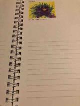 【世界の口と足で描く画家たちが描いた絵が全ページに!】アートダイアリー2019の画像(5枚目)